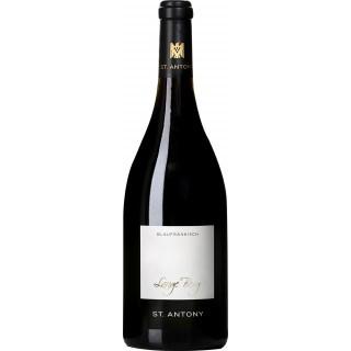 2016 Lange Berg Blaufränkisch trocken Bio - Weingut St. Antony