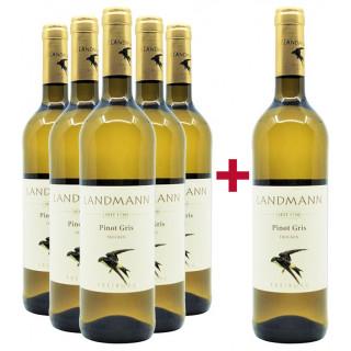 """5+1 Paket """"Pinot Gris trocken Bio"""" - Weingut Landmann"""