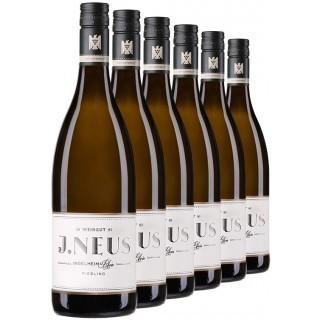 Riesling-Gutswein-Paket - Weingut J.Neus