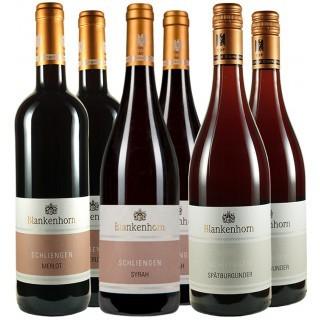 Rotwein Paket - Weingut Blankenhorn