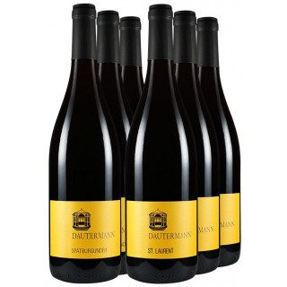 Rotwein-Paket // Weingut Dautermann