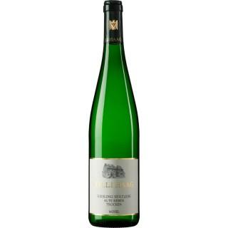 2020 Riesling Grauschiefer alte Reben trocken - Weingut Willi Haag