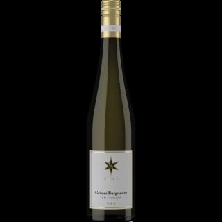2019 Stern Grauburgunder vom Lösslehm trocken - Weingut Stern