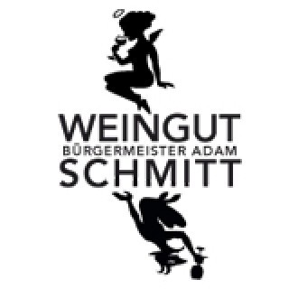 2018 Blauer Portugieser trocken Bio - Weingut Bürgermeister Adam Schmitt