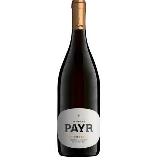 2015 Ried Spitzerberg Blaufränkisch trocken - Weingut Payr