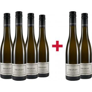 4+2 Paket Bechtheimer Hasensprung Muskateller Beerenauslese - Weingut Brandt