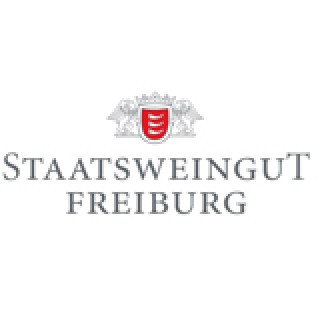 2018 Pino Magma Kaiserstuhl Weiß- und Grauburgunder Cuvee QbA trocken - Staatsweingut Freiburg