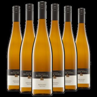 Riesling Paket - Weingut Bischel