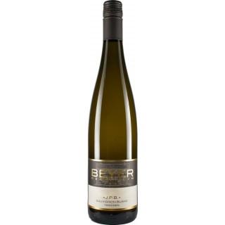 2019 Kollektion J.P.B. Sauvignon blanc trocken - Weingut Johann P. Beyer