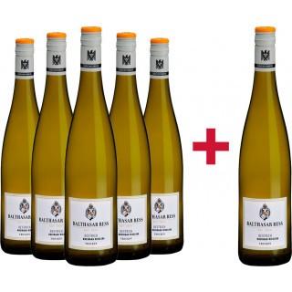 5+1 Oestricher Riesling VDP.Ortswein trocken Paket - Weingut Balthasar Ress