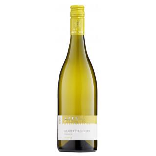 2020 Grauer Burgunder - vom Muschelkalk - trocken - Weingut Apel