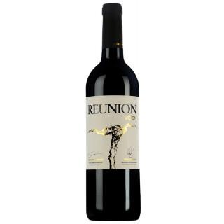 2015 Reunion Vision Trocken - Weinlaubenhof Kracher