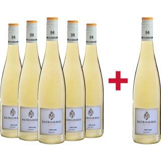 5+1 Pinot Blanc Landwein Rhein trocken Paket - Weingut Balthasar Ress