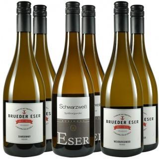Brüder Eser-Probierpaket // Weingut H.T. Eser