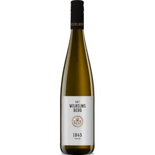 """2019 Weissweincuvée """"1845"""" trocken - Gut Wilhelmsberg"""
