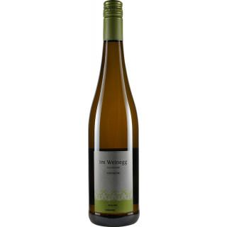 2019 Hochheimer Riesling feinherb - Weingut im Weinegg