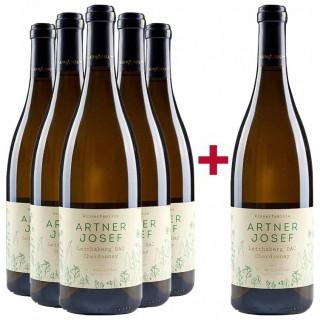 5+1 Chardonnay Paket  - Winzerfamilie Artner