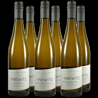 Rheinblick-Weißwein-Paket-Weingut Knewitz