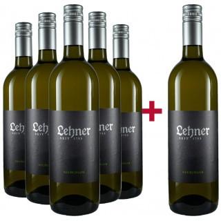 5+1 Neuburger Paket - Weingut Lehner