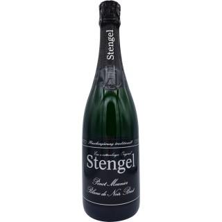 Pinot Meunier Blanc de Noir Brut - Sekt- und Weinmanufaktur Stengel
