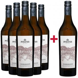 5+1 Sämling Paket - Weingut Pfeifer