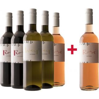 5+1 Weingut Knauß Entdeckerpaket - Weingut Knauß