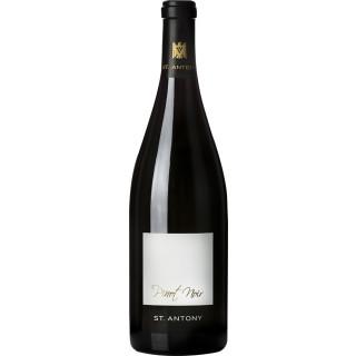 2015 Nierstein Pinot Noir VDP.Ortswein trocken Bio - Weingut St. Antony