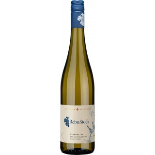 2020 Reb&Stock Johanniter trocken Bio - Weinhaus Hoflößnitz