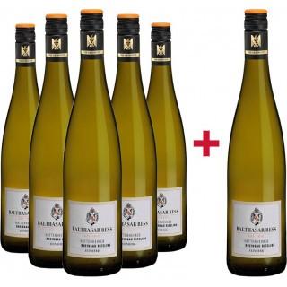 5+1 Hattenheimer Riesling VDP.Ortswein feinherb Paket - Weingut Balthasar Ress
