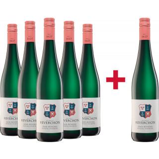 5+1 Saar Riesling Mineral feinherb Paket - Weingut Reverchon