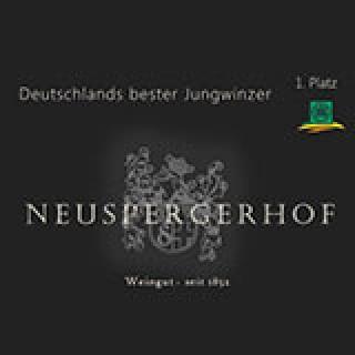 2018 BIO Literwein Rosé 1L - Weingut Neuspergerhof