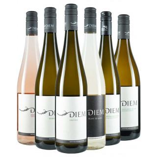 Weinviertel Sommerpaket - Weingut Diem Gerald und Andrea