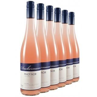 Pinot Noir Rosé-Paket // Weingut Dackermann