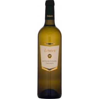 2017 SCHALES Sauvignon Blanc trocken - Weingut Schales