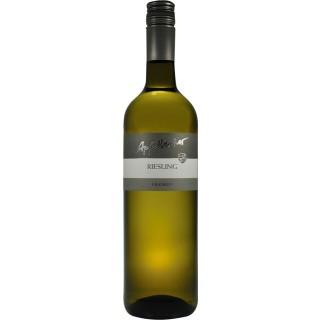 2017 Riesling trocken - Weingut Apfelbacher