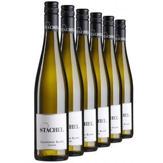 """""""Sauvignon Blanc-Paket"""" trocken - Weingut Erich Stachel"""