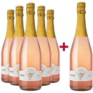 5+1 Secco Rosé Probierpaket - Baumhausweine