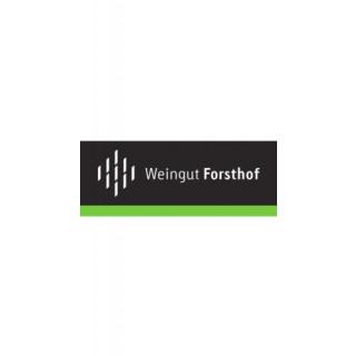 2018 Trollinger-Lemberger Bio - Weingut Forsthof