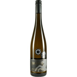 2015 Flonheimer Geisterberg Sauvignon Blanc Lagenwein trocken - Weingut Pauser