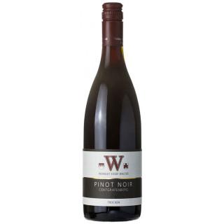 2013 Pinot Noir Centgrafenberg Barriqueausbau trocken - Weingut Josef Walter