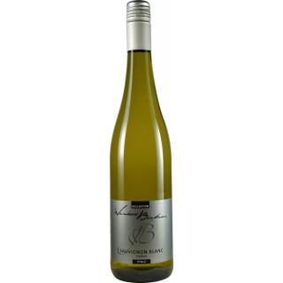 2019 Sauvignon Blanc trocken - Weinhaus Büchner
