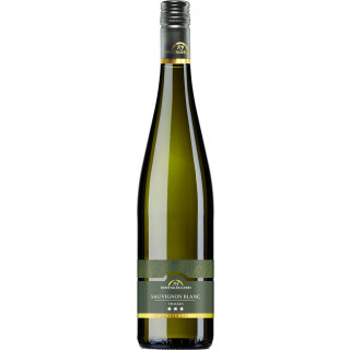 2020 Sauvignon Blanc *** Premium trocken - Remstalkellerei