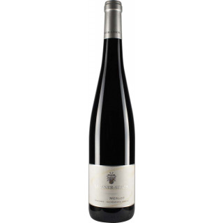 2016 Merlot trocken - Weingut Kassner Simon
