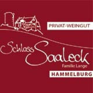 Schlossglühwein WEIß BIO - Weingut Schloss Saaleck