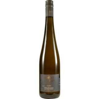 2017 Feuerberg Spätburgunder Blanc de Noir trocken BIO - Weingut Bernhard-Räder