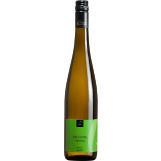 2017 Riesling trocken - Weingut Quint