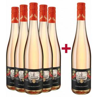 5+1 Paket Rosé BIO 2019 - Weingut Karl Schaefer