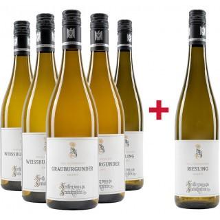 5+1 VDP.ORTSWEIN Paket - Weingut Freiherr von und zu Franckenstein
