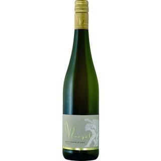 2019 Sauvignon Blanc QbA trocken - Weingut Georg Naegele - Schlossbergkellerei