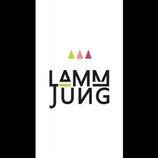 2017 Riesling Basis feinherb - Weingut Lamm-Jung